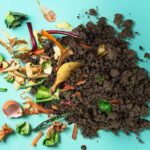 Get Started with Home Composting